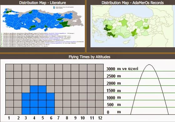 Distribution et phénologie d'Archon appollinus.  http://www.adamerkelebek.org/IcerikDetay.asp?IcerikKatId=2&TurId=177