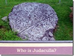 Judaculla Rock Petroglyphs