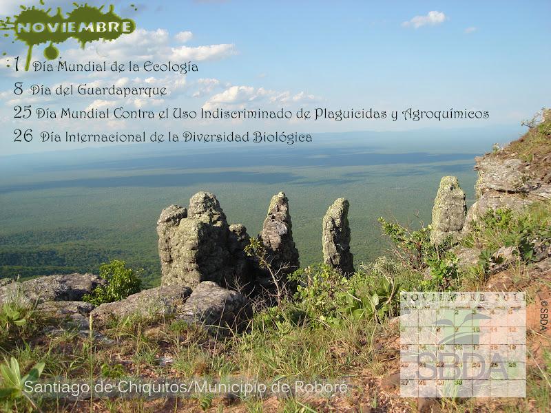 Calendario Ambiental SBDA Noviembre