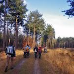 030-Nieuwjaarswandeling met de Bevers.Menno gidst ons door het mooie natuurgebied De Regte Heide te Go+»rle