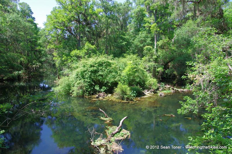 04-04-12 Hillsborough River State Park - IMGP9663.JPG