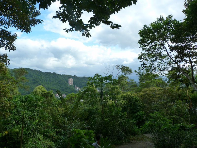 Taipei. Si Shou shan, en plein coeur de Taipei. Accès par un chemin bien plus sauvage. - P1240829.JPG