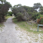 Track from Green Cape to car park (107545)