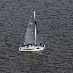 Dauphin Island Race 2013 018