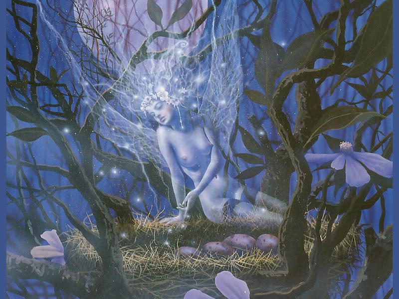 Night Fairy In Flowers, Fairies 4