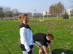 Mistrzostwa Polic w biegach przełajowych 29.03.2014
