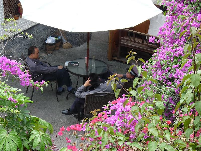 Chine .Yunnan,Menglian ,Tenchong, He shun, Chongning B - Picture%2B733.jpg