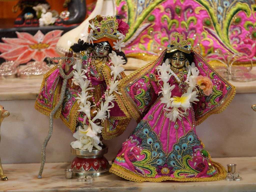 ISKCON New Govardhan Deity Darshan 16 Dec 2015 (32)