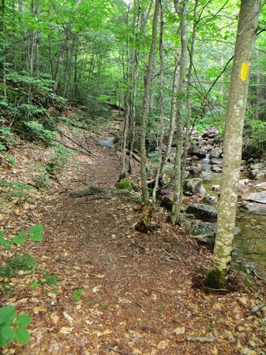 HikingTableMountain-4-2015-07-30-20-13.jpg