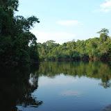 La rivière Cristalino, affluent du Rio Sao Manuel, lui-même tributaire du Tapajos, en novembre 2009. Photo : Re Mendes