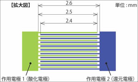 くし部分の拡大図