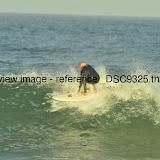 _DSC9325.thumb.jpg