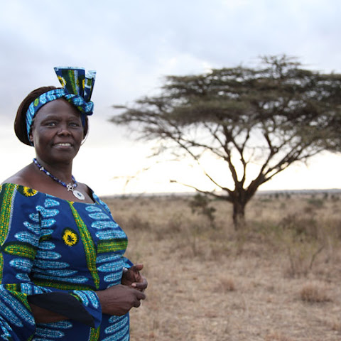 Wangari Maathai from Kenya campaigned for human rights and the environment, along with helping to support the rights of women and girls.
