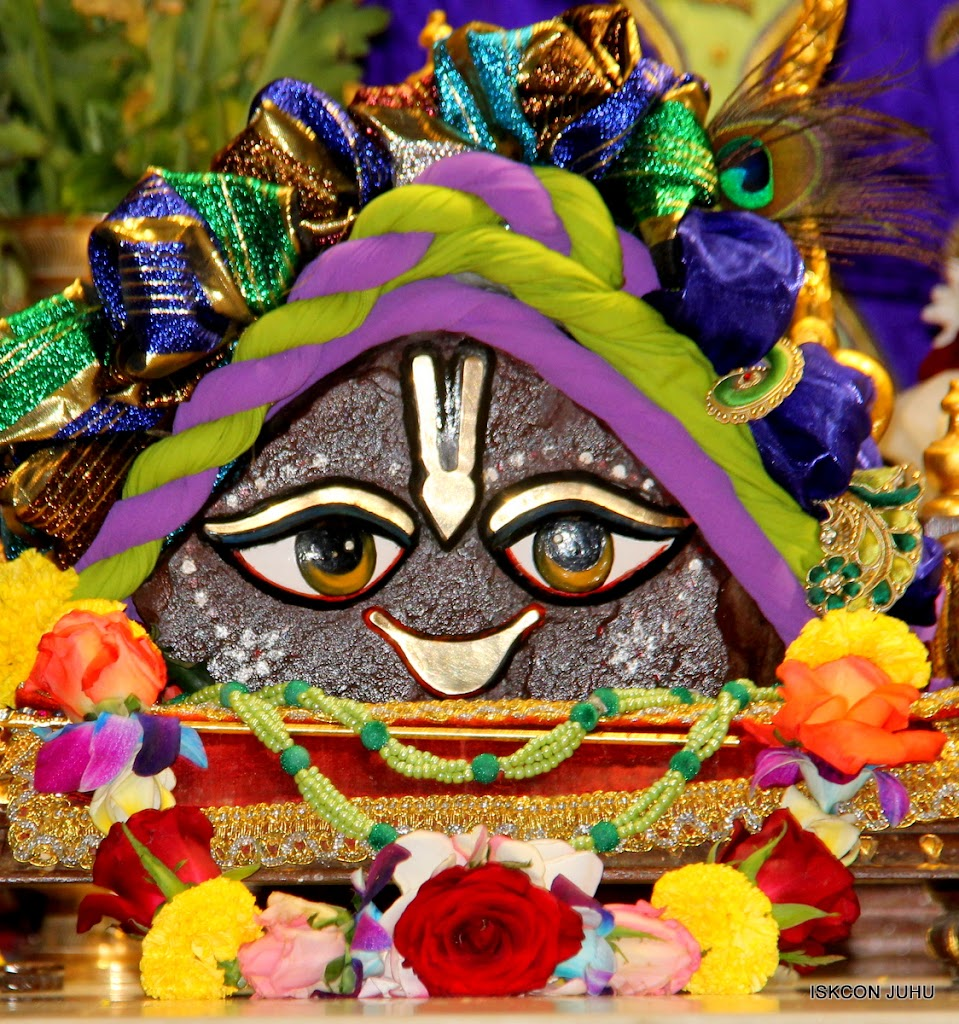 ISKCON Juhu Sringar Deity Darshan 11 Jan 2016  (9)