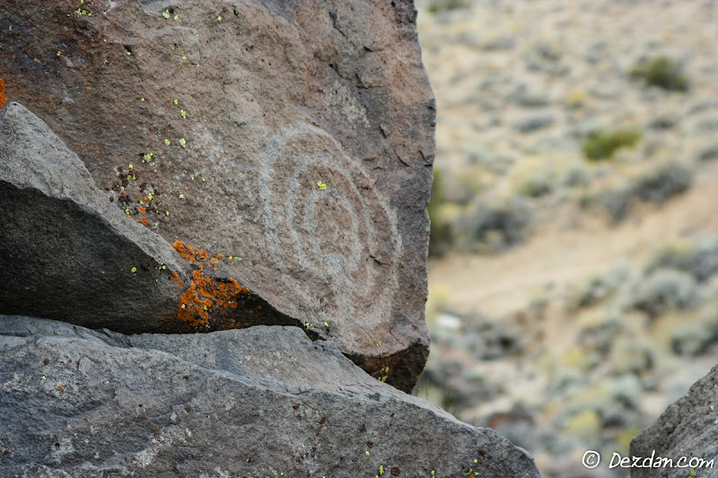 Birthday Canyon petroglyph.