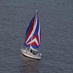 Dauphin Island Race 2013 031