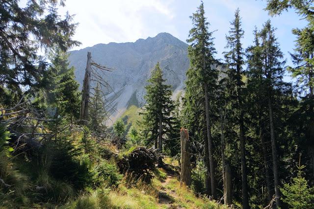 Blick nahe Gaisalphütte auf Entschenkopf Tour primapage
