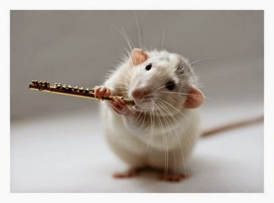 rat%2Bwith%2Bflute.jpg