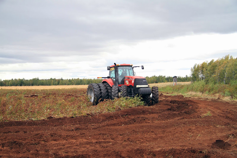 Transformation branchailles en terre agricole - Transformation-de-branchailles-en-terre-agricole-3.jpg