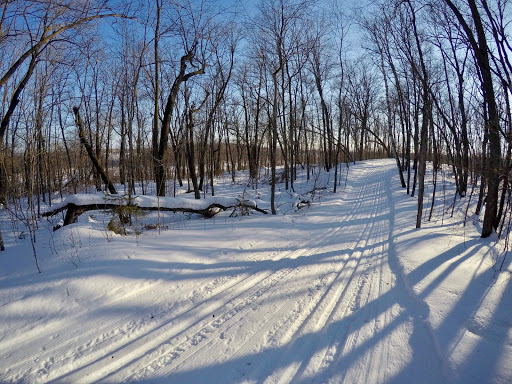 Sap Run at dusk, January 19th. Both tracks cut new this morning.
