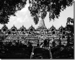 Week 2016-33 - Borobodur