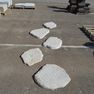 paso japones blanco (10).JPG