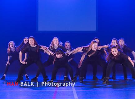 Han Balk Voorster Dansdag 2016-4110.jpg
