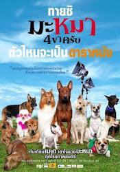 Mid Road Gang - Những chú chó bất hạnh