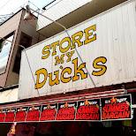 store my DUCKS in Harajuku in Harajuku, Tokyo, Japan