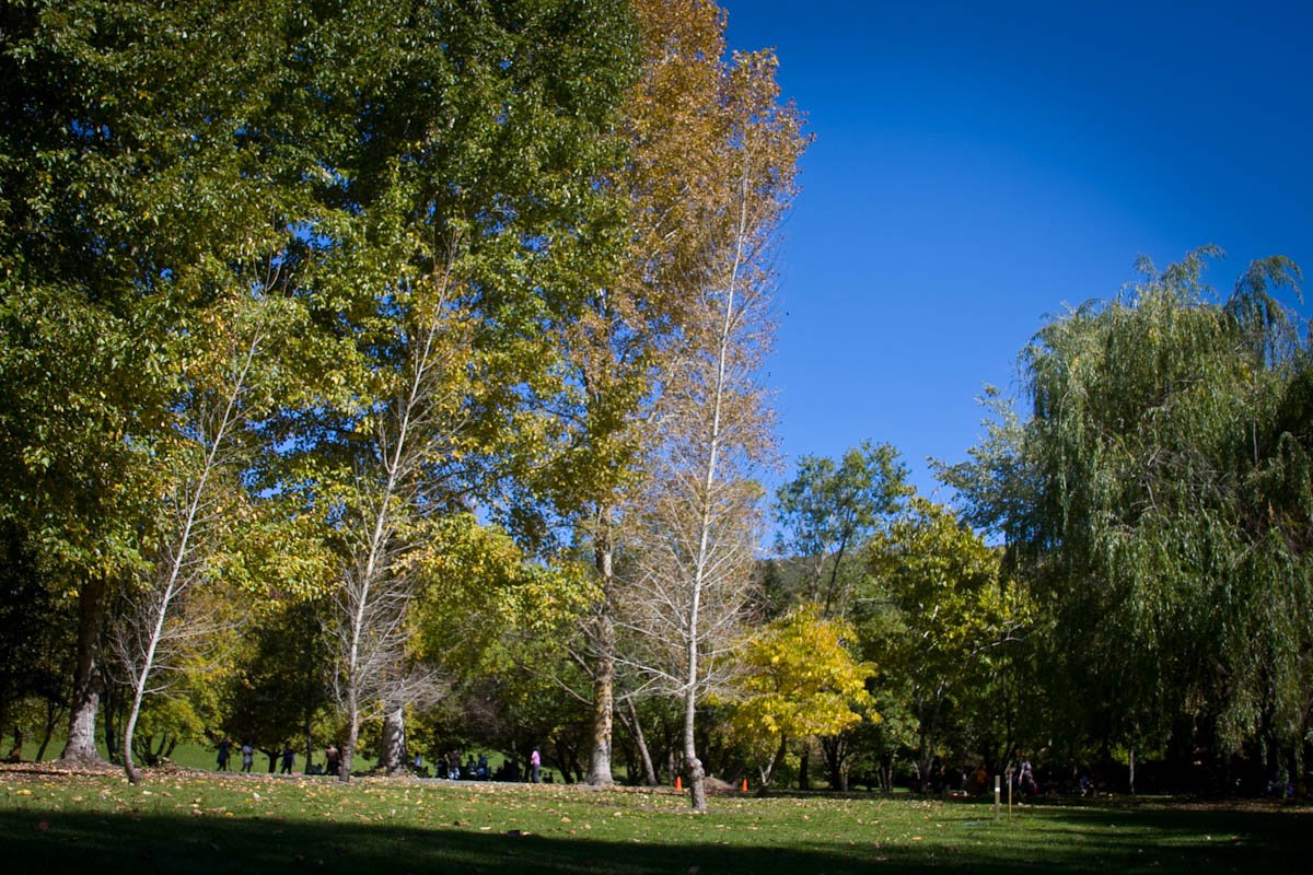 2011 04 25 Mt Lofty Botanic Garden - IMG_6494.jpg