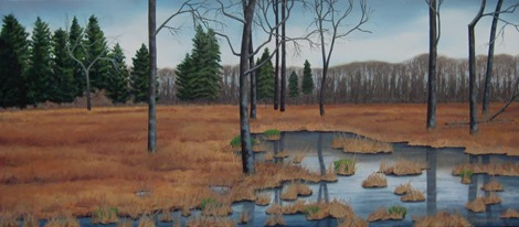 Doug Schiller_The Great Swamp in Winter 2
