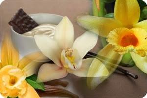 ваниль - любимая приправа