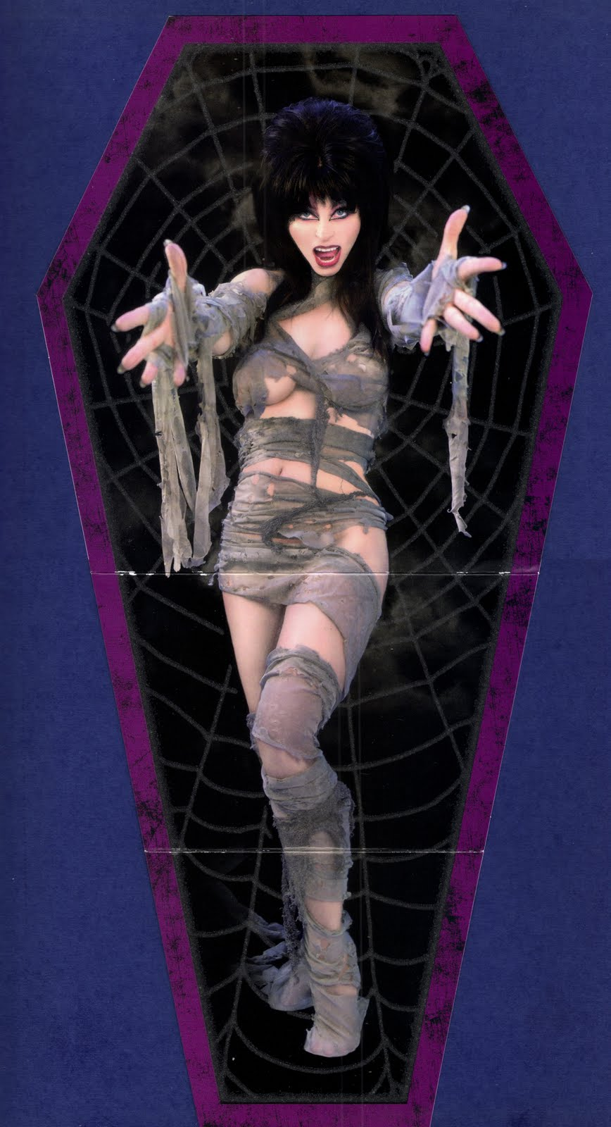 Elvira The Mistress Of The Dark Cult Oddities