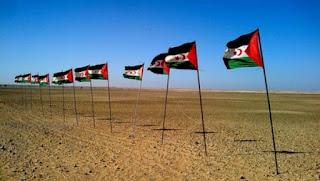 Une semaine d'hommage aux prisonniers politiques sahraouis à Bruxelles