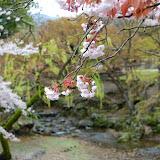 2014 Japan - Dag 8 - jordi-DSC_0454.JPG
