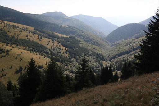 Šútovská dolina