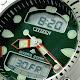Citizen E-D Promaster : JP1060-52E