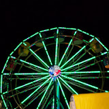 Fort Bend County Fair 2013 - 115_8028.JPG