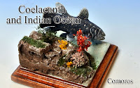 Coelacanth & Indian Ocean -Comoros-