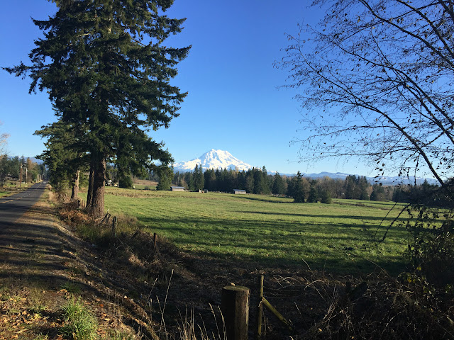 Mount Rainier, from Graham, WA near Lake Kapowsin.