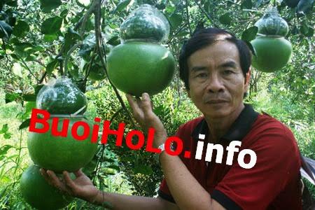 Ong-Vo-Trung-Thanh-chu-Vuon-Buoi-Ho-Lo-Tai-Loc-Qua-Tet-2014