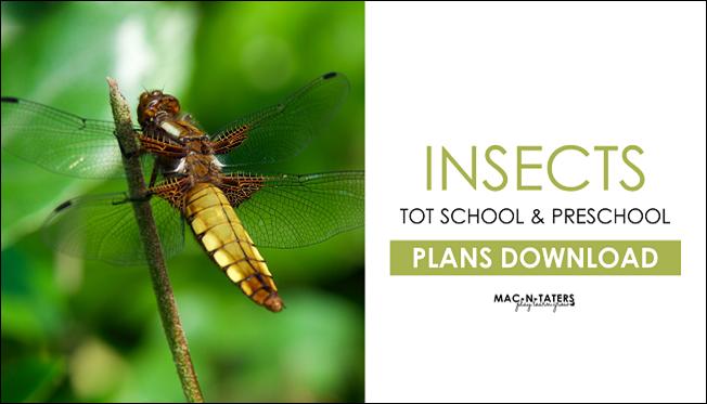 Insects Tot School & Preschool Plans