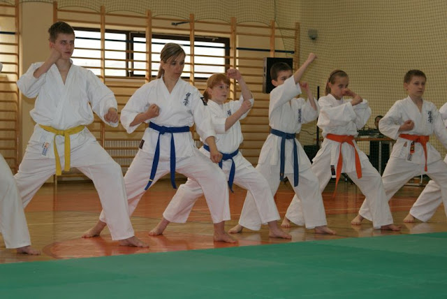 DO 2011 Pokaz karate - DSC00083_1.JPG