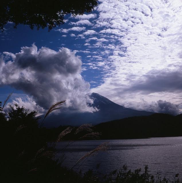 メスイコンタ 富士山