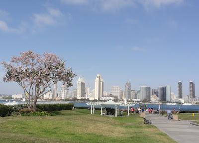 Park med utsikt mot San Diegos skyskrapere.