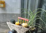 Herbstdeko Haupteingang PenzIMG_0693.JPG
