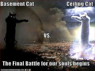 basement%2Bcat%2Bvs%2Bceiling%2Bcat.jpg