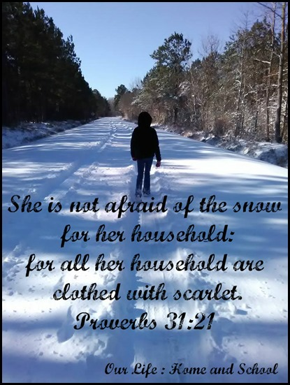 Scripture and a Snapshot _ 12118