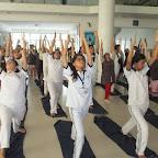 International Day of Yoga (21-6-2016)