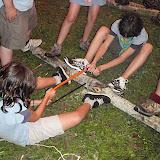 Campaments dEstiu 2010 a la Mola dAmunt - campamentsestiu009.jpg